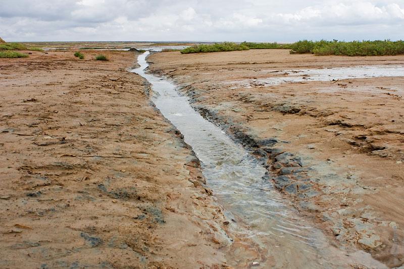 Один из рукавов реки