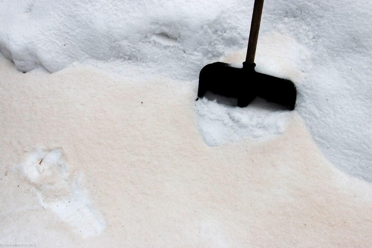 Саратов накрыло желтым снегом