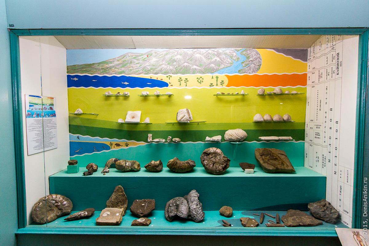 Отдел природы хвалынского краеведческого музея 12