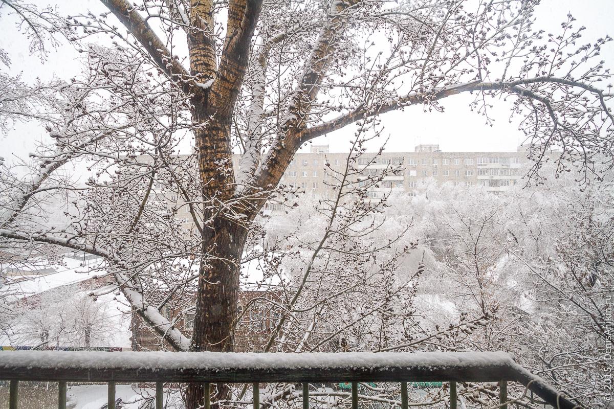 Апрельский снегопад 1