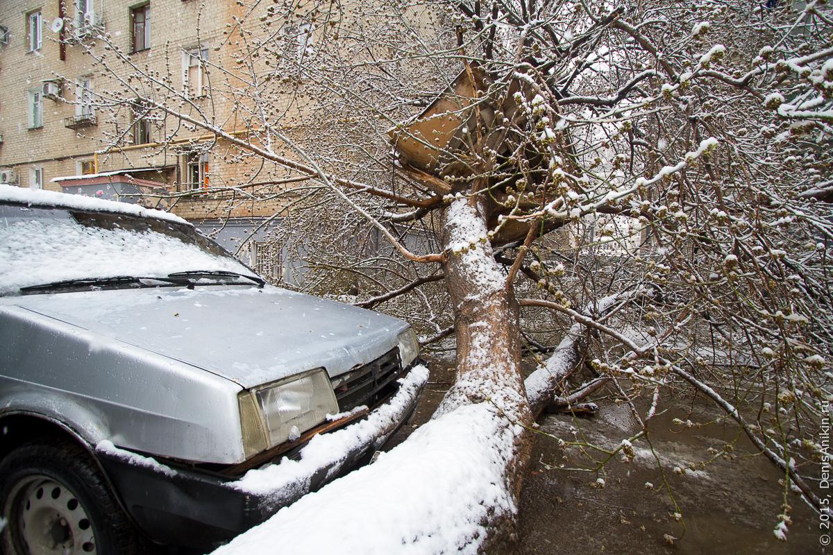 Апрельский снегопад 5